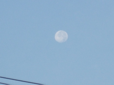 10:17朝の月