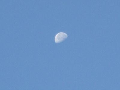 10:20朝の月