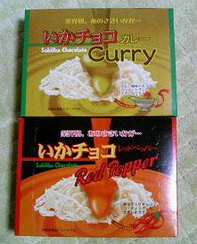 ikachokocurry1.jpg