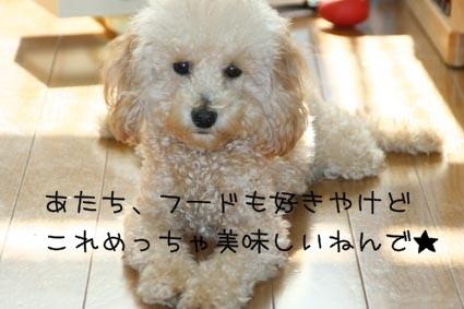 onikukoko
