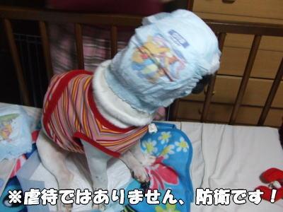 07_11_17_9.jpg