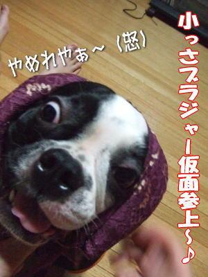 07_9_16-8jpg..jpg
