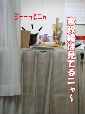07_9_16-9jpg..jpg