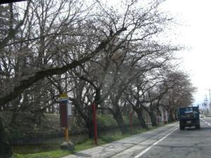 2008415-1.jpg