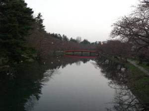 2008415-3.jpg