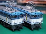 EF651004 EF651005