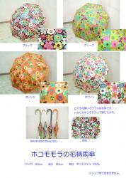 ホコモモラ花柄傘