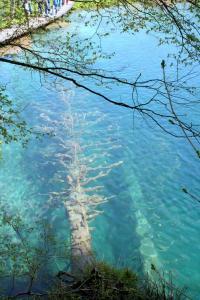ブリトヴィッチェ湖畔2