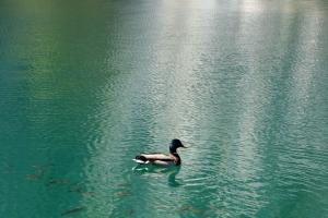 ブリトヴィッチェ湖畔