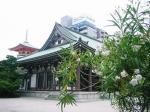 東長寺 庭