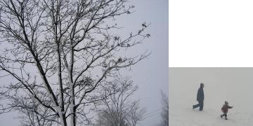 雪080203
