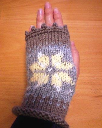 おうち用手袋