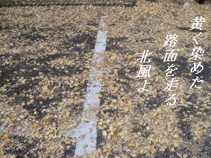 itiyou-1.png