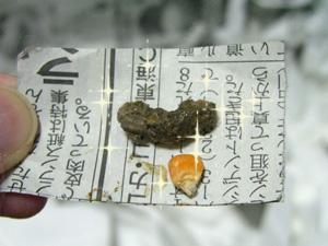 ウンコー!(*゚∀゚)=3