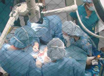 カレン手術中