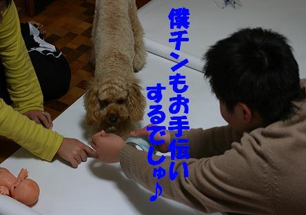 IMG_3516bbb.jpg