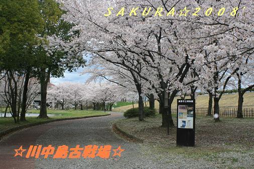 IMG_5536bbb1.jpg
