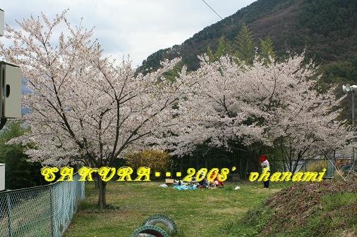 IMG_5645bbb.jpg