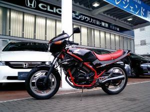 CA251249.jpg
