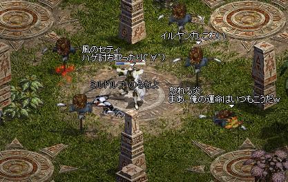 20071130113556.jpg