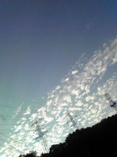 鎌倉霊園より上空を臨む