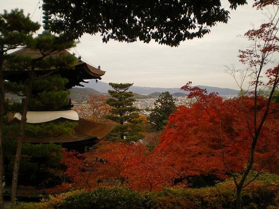 常寂光寺の紅葉の盛り