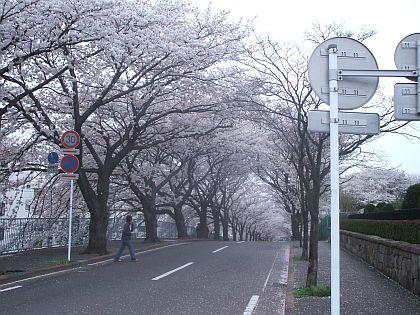 20070401191625.jpg