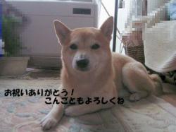 RIMG4081ken1.jpg