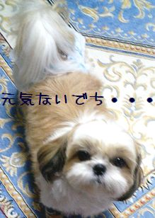 20060901180510.jpg