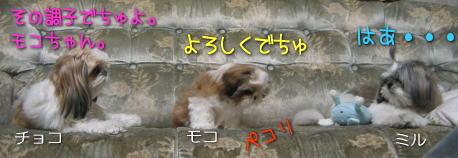 20070214m1.jpg