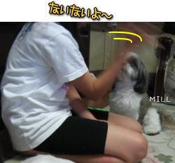 623millchoco7.jpg