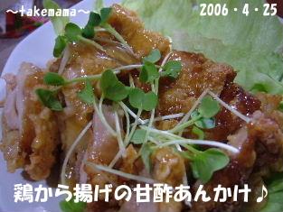 20060427123847.jpg