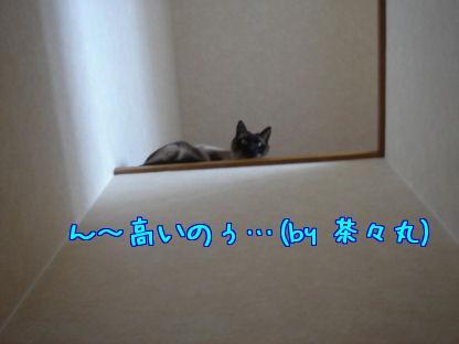 OQBSMWOV.jpg