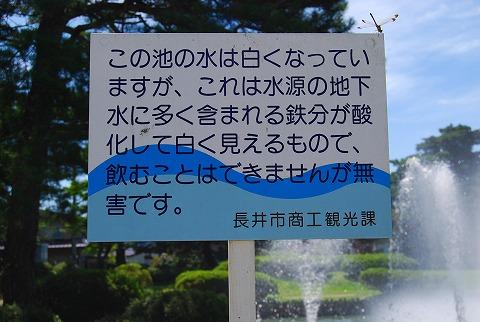 DSC_7699.jpg
