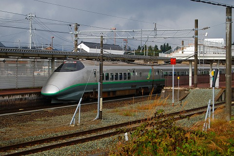 DSC_8292.jpg