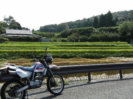 2008_0907kokudou0012.jpg