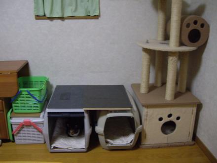 猫ガレージ
