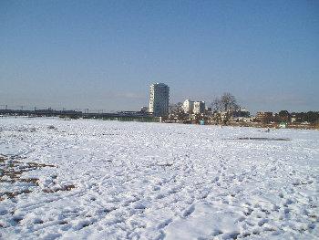 snow0121-2.jpg