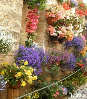 花いっぱいの壁