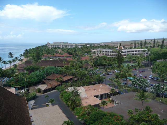 2009 HAWAII 134