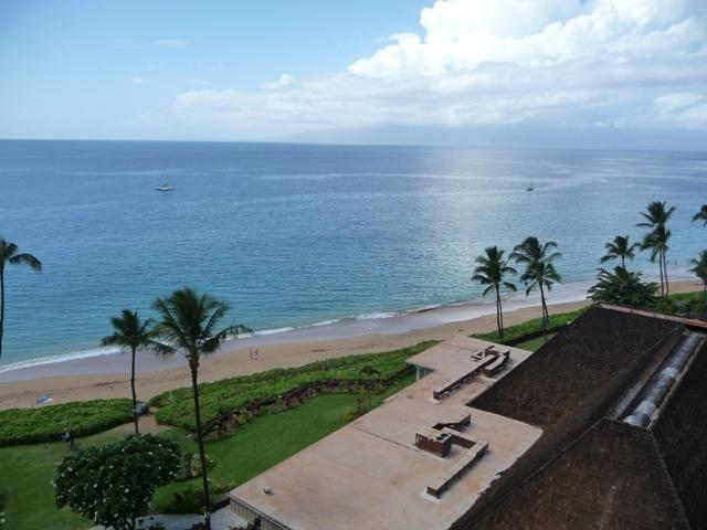 2009 HAWAII 133