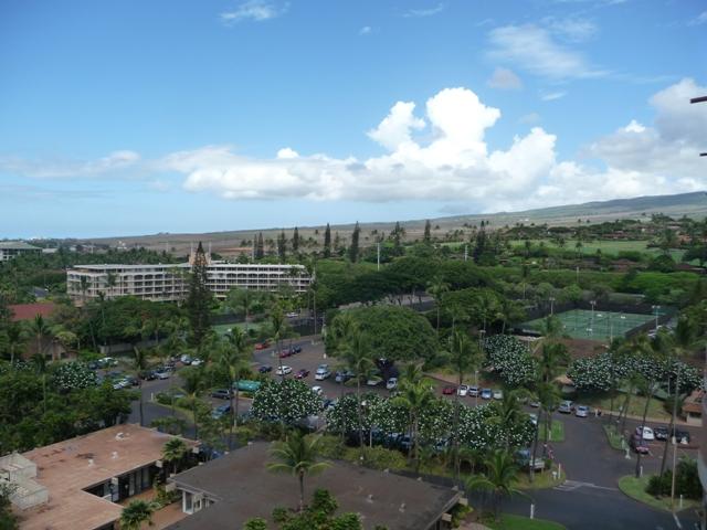 2009 HAWAII 135
