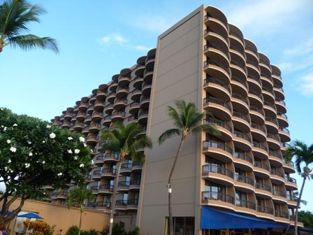 2009 HAWAII 193