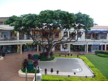 2009 HAWAII 163