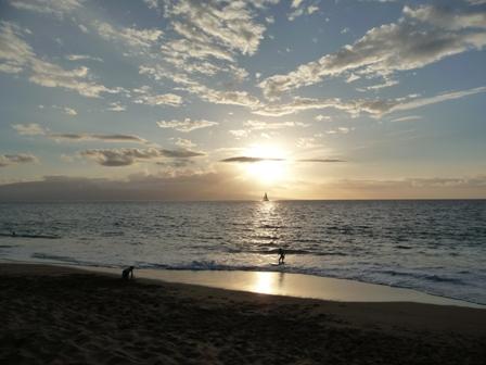 2009 HAWAII 197