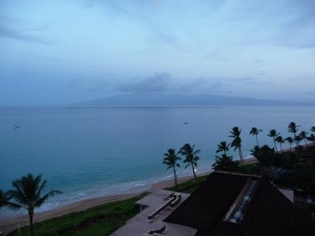 2009 HAWAII 217