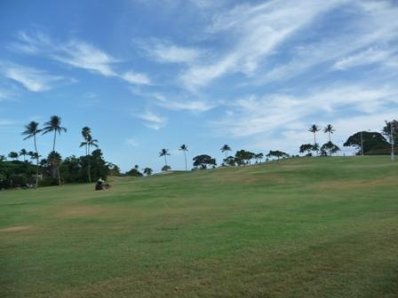 2009 HAWAII 249