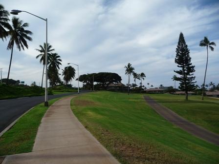 2009 HAWAII 232