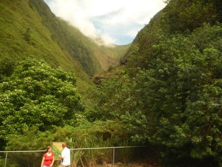 2009 HAWAII 309