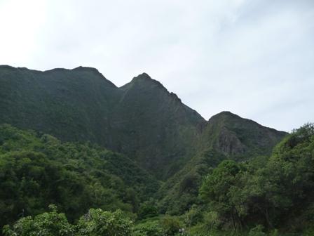 2009 HAWAII 289